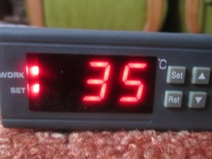 SET WORK LED thermostat set temperature