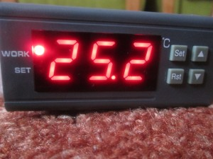 temperature controller ebay red display settings